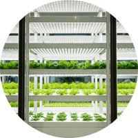 Smart Indoor Farming